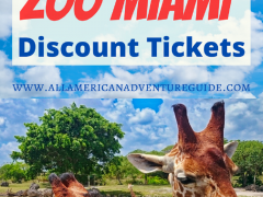 Zoo Miami Discount Tickets
